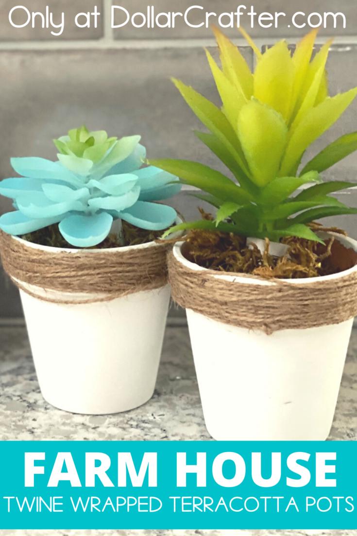 Twine Wrapped Terracotta Pots